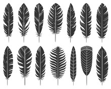 Feather Quill Tribal Silhouette Icons Vector Set