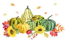 Hand Draw Watercolor Autumn Pu...