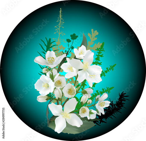 white jasmine blooms in cyan circle Canvas Print