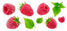 Raspberry Collection Isolated On White Background