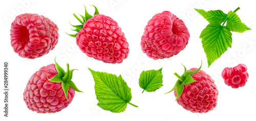 Photographie Raspberry collection isolated on white background