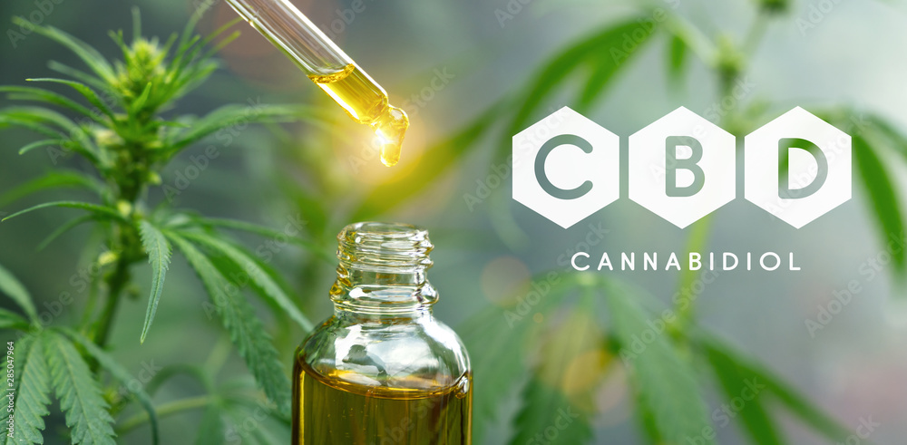 Fototapety, obrazy: droplet dosing a biological and ecological hemp plant herbal pharmaceutical cbd oil from a jar. Concept of herbal alternative medicine, cbd oil, pharmaceutical industry