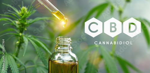 Photo Stands Countryside droplet dosing a biological and ecological hemp plant herbal pharmaceutical cbd oil from a jar. Concept of herbal alternative medicine, cbd oil, pharmaceutical industry