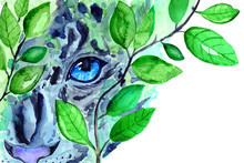 Watercolor Snow Leopard In The...