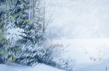 Snowy  Winter Forest Oil Paint...