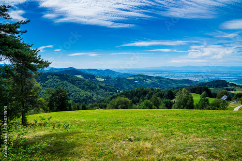 Foto auf AluDibond Karibik Germany, Green hills, mountains and valley covered by green fir and conifer trees, endless view from mountain top at st ulrich near schauinsland mountain