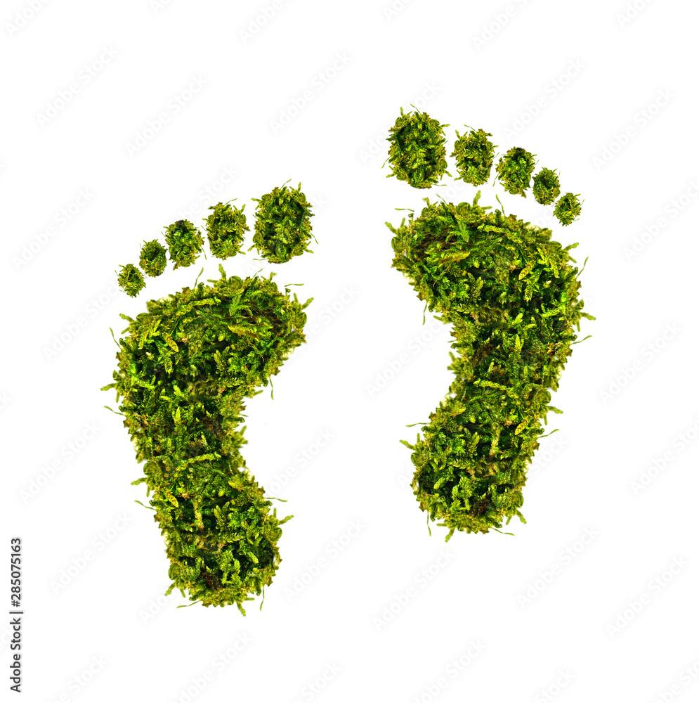Fototapeta ökologischer Fußabdruck - grüne Füße aus Moos