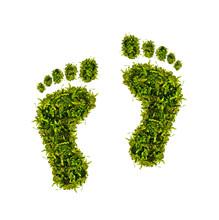 ökologischer Fußabdruck - Gr...