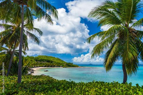 piaszczysta-tropikalna-plaza-virgin-gorda-brytyjskie-wyspy-dziewicze