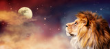 Fototapeta Sawanna - African lion and moon night in Africa banner. African savannah landscape theme, king of animals. Spectacular dramatic starry cloudy sky. Proud dreaming fantasy lion in savanna looking forward.