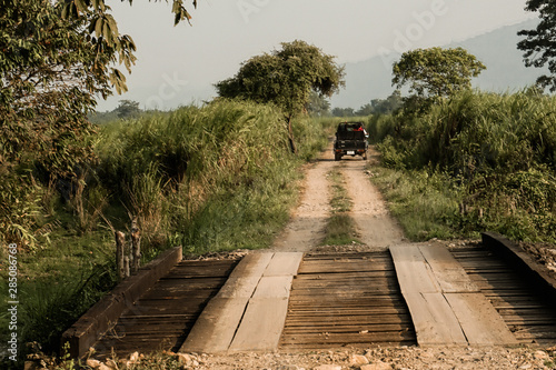 Driving over a wooden bridge at kaziranga national park Wallpaper Mural