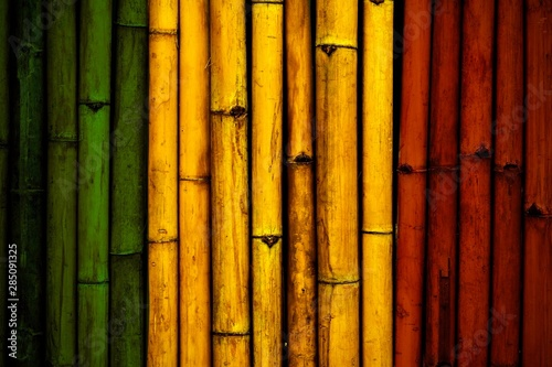 Green yellow red on Bamboo wall texture  Reggae background concept Wallpaper Mural