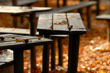 Germany, Bavaria, Wood Benches...