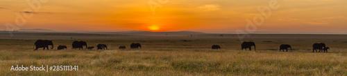 Photo Maasai Mara Sunrise