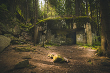 Old And Abandoned Bunker In Fo...
