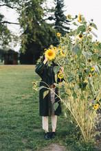Woman Hiding Face Behind Sunfl...
