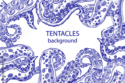 фотография Octopus tentacles sketch  background