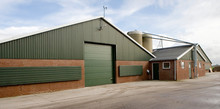 Modern Poultry Stable Netherlands. Farming. Chicken Stable With Silo