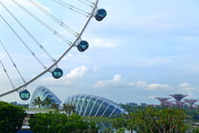 Gardens By The Bay And Singapo...
