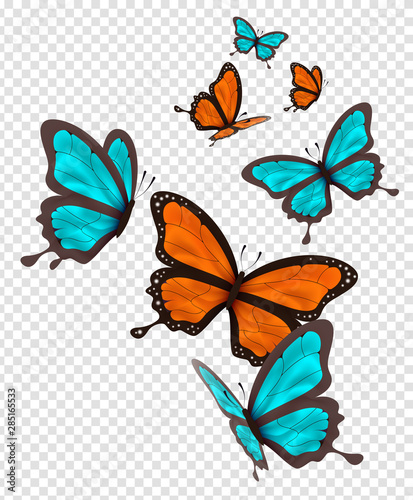 Fotografie, Obraz  Isolated orange and blue butterfly set