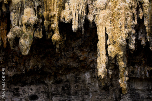 Stalactite from a small cave near the 12 apostles, Victoria Australia.