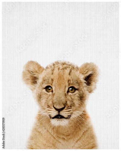 Foto op Plexiglas Leeuw portrait of a lion