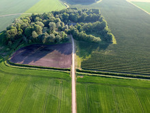 Aerial View Of Old Homestead O...
