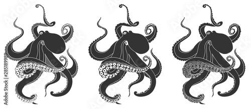 Obraz na plátně  octopus stylization