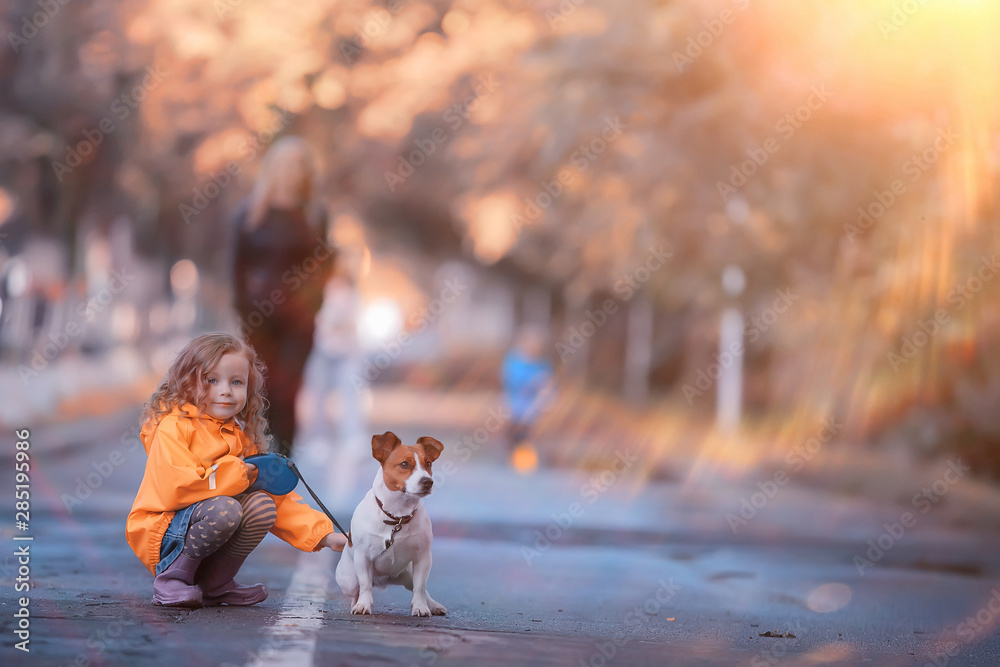 Fototapety, obrazy: little girl with a dog jack russell terrier / child childhood friendship, pet, small dog in the autumn park walk