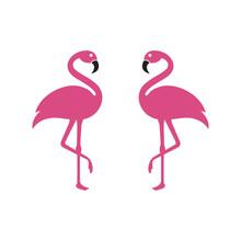 Flamingo Logo Template Vector