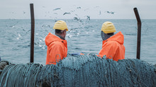 Crew Of Fishermen Work On Comm...