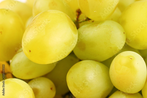 White Laura grapes close up Wallpaper Mural