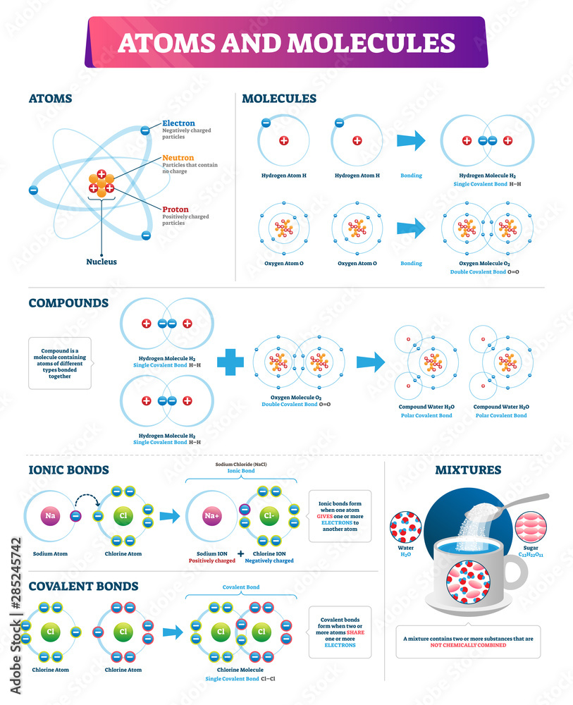 Fototapeta Atoms and molecules vector illustration. Labeled compounds bonds diagram.
