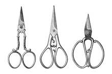 Collection Of Antique Scissors Hand Draw Vintage Style Black And White Clip Art Isolated On White Background,Vintage Scissors Rare Item