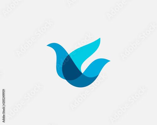 Fototapeta  Bird logo design abstract modern colorful style illustration