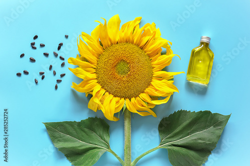 Fototapeta Bottle of natural sunflower oil, seeds and fresh yellow sunflower on blue background. Creative concept organic vegetable oil production, harvest time. Top view, Flat lay, Template obraz