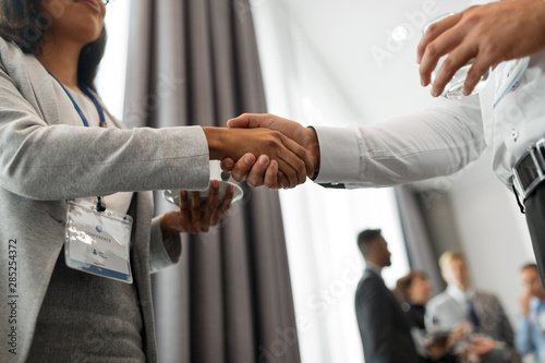 Cuadros en Lienzo  gesture, partnership and cooperation concept - handshake of people at internatio