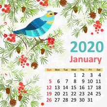 Template With Pretty Bird. Calendar For 2020, January
