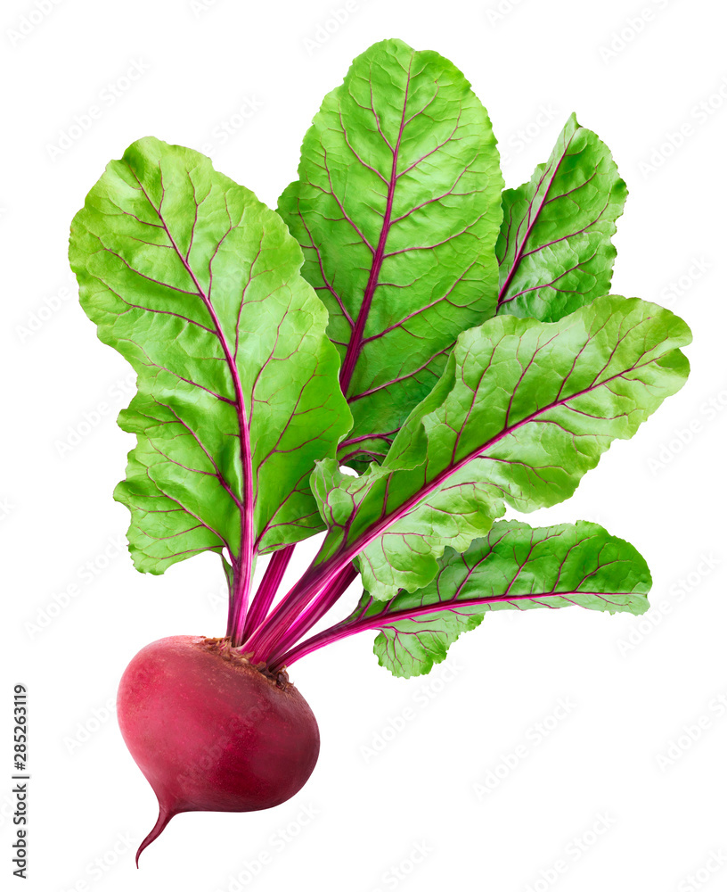 Fototapety, obrazy: Beetroot isolated on white background with clipping path