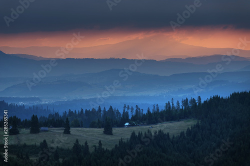 Poster Morning with fog Summer sunrise in the Carpathians
