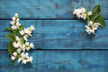 Greeting Card With Flowering J...