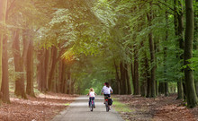 Little Girl Cycling With Her Mother In Holland