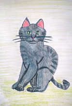 Gray Cat. Child Pencil Hand Drawing.