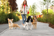 Young Woman Walking Adorable D...