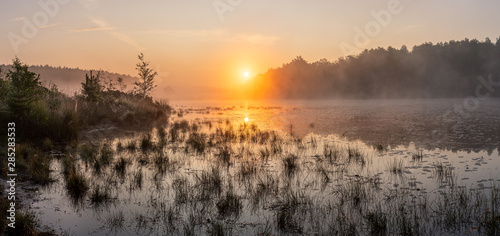 Fototapeten Natur Sunrise over a pond in the grassland - Limburg, Belgium. In the summer the sun rises just between the trees in the background. A bit of fog completes the picture.