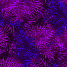 Abstract Botanical Background....