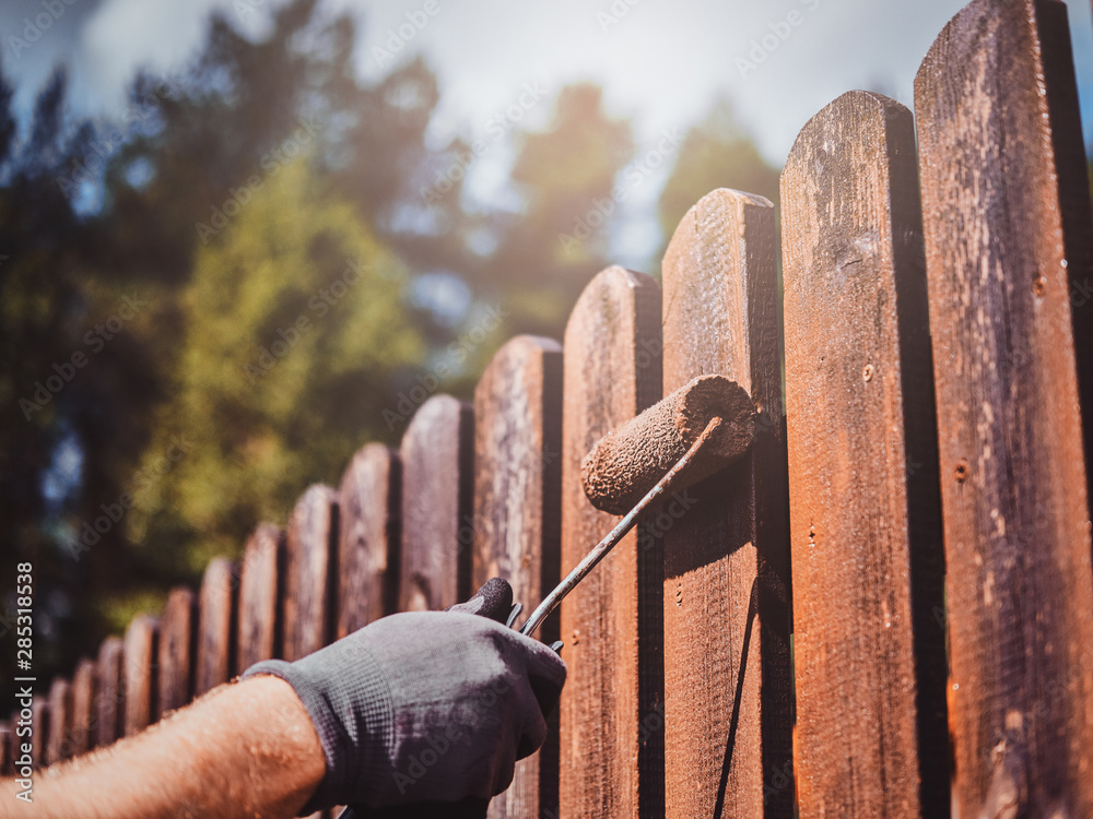 Fototapeta Man in protective gloves is painting wooden fence in bright summer day.