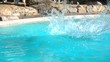 Girl somersaults jumping into the pool. Splashes fly away