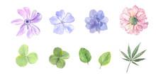 水彩で描く花と葉セット
