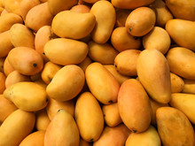 A Lot Of Mango On Sale At Farm...